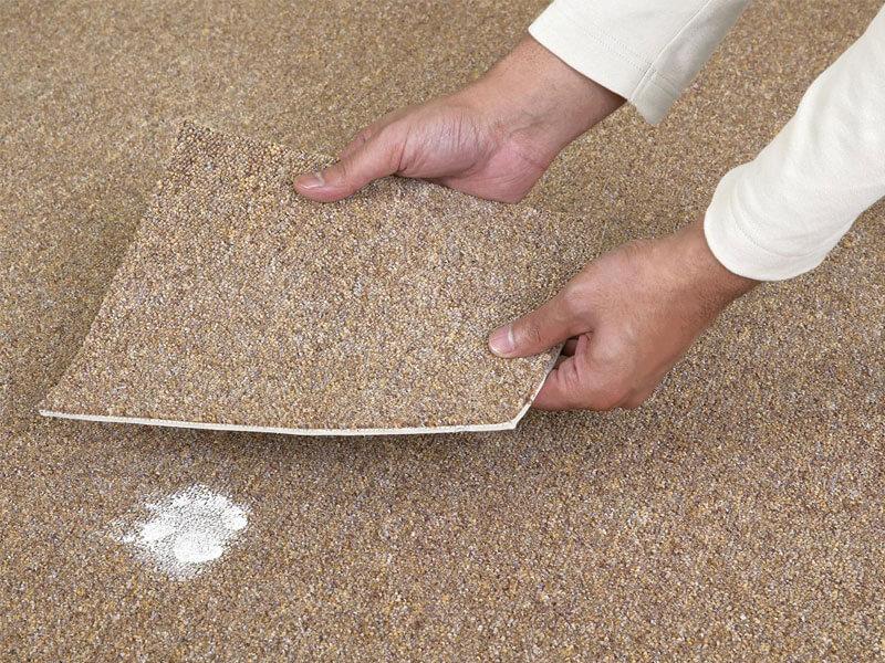 Carpet Patches Repair
