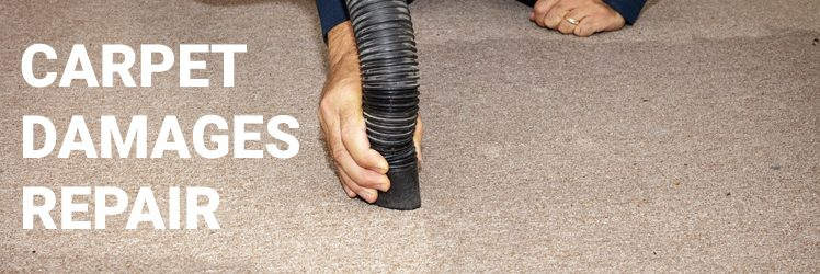 Common Carpet Damages That Are Reversible