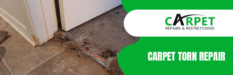 Carpet Torn Repair