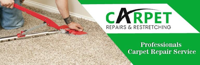 Professionals Carpet Repair Service